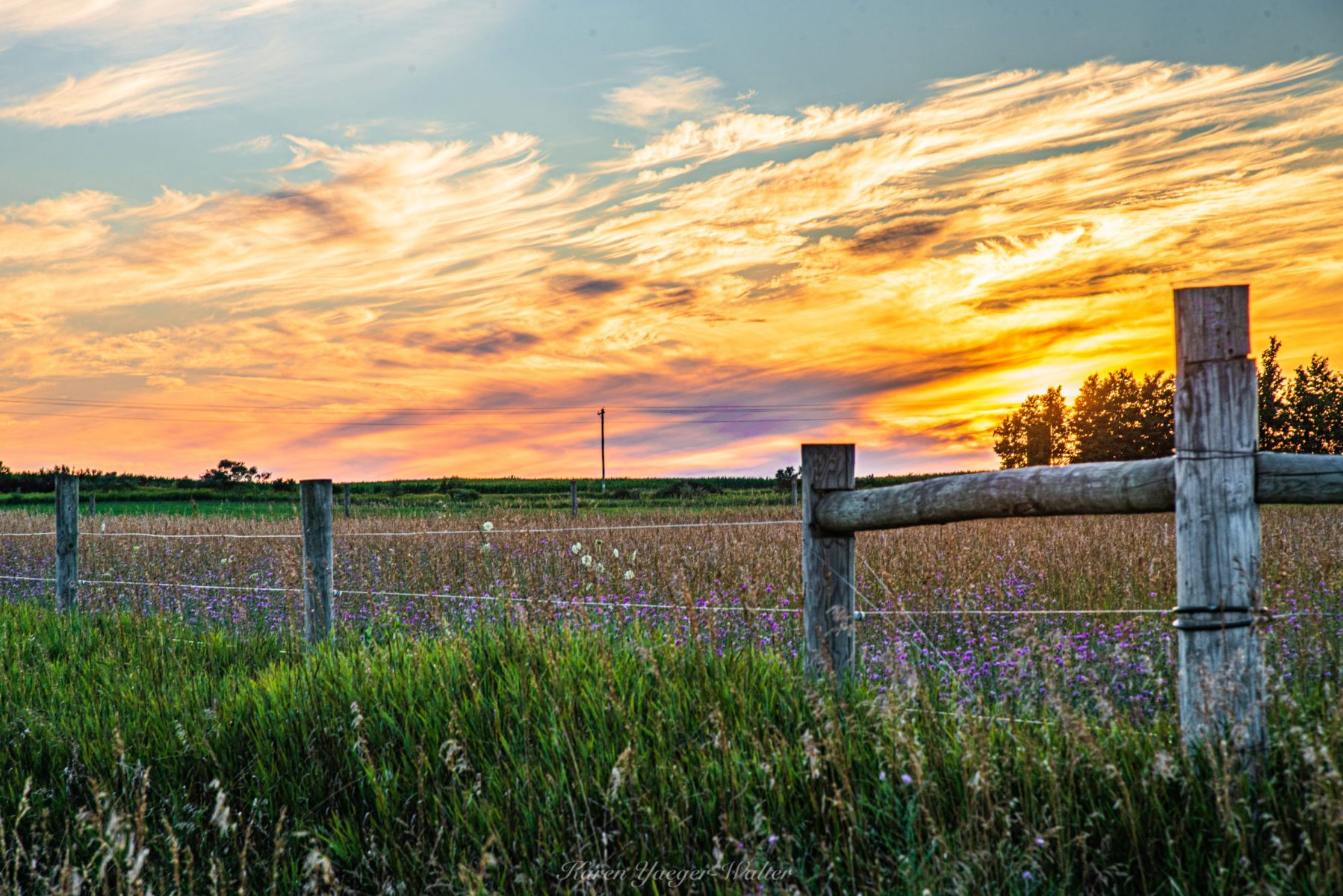 Karen Walter, Farm Field Sunset Muskegon County